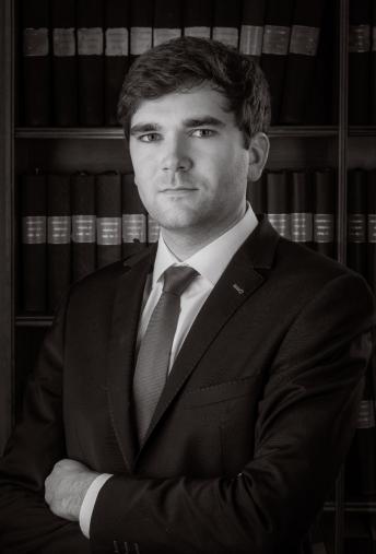 Stef Van Puyvelde